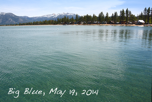 Black Bear Lodge Tahoe