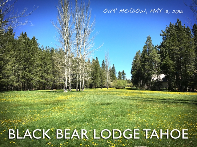 BLACK_BEAR_LODGE_TAHOEmay