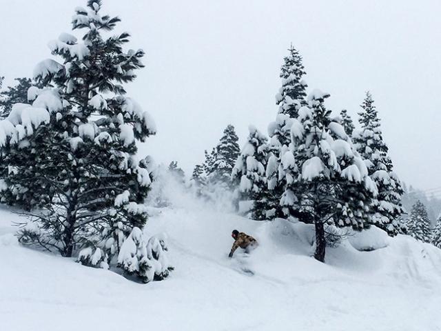 snowtahoe